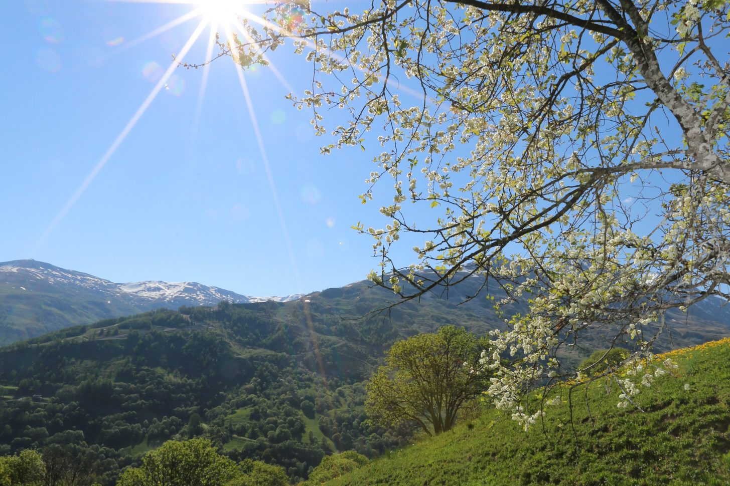 Montagne de valloire ensoleillée